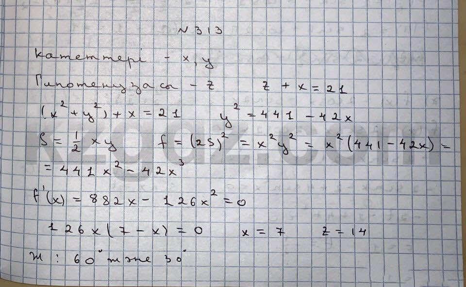 Алгебра Абылкасымова 10 класс Естественно-математическое направление  Упражнение 313